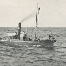 """THE """"HEKLA"""" GOES OUT FOR WHALES. With her harpoon gun poised for the kill, the steam whaler cruises around The Faeroes in search of finback and blue whales. Law requires the whale fishery to sell the natives at a low price all the whale meat they demand for food; the surplus may be reduced to oil for export."""